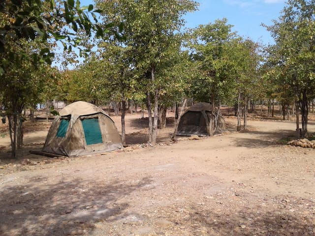 Warthogs Safari Camp Tent 3
