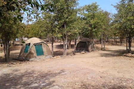 "Warthogs Safari Camp ""Compact"" Tent 3"