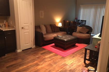 Comfortable, clean apartment near Plano - Lewisville - Lakás