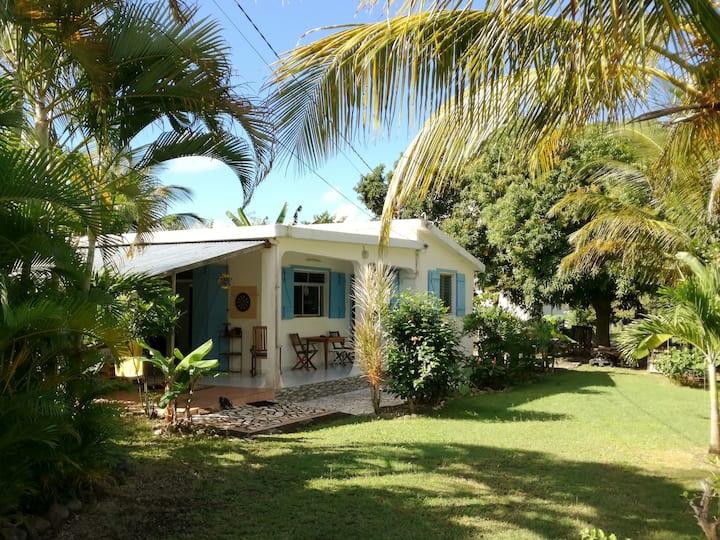 Tif & Tef's house