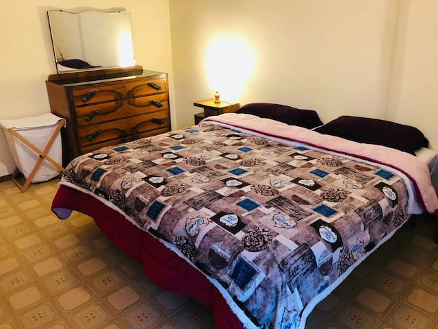 Room in florence (9 min from the central station)