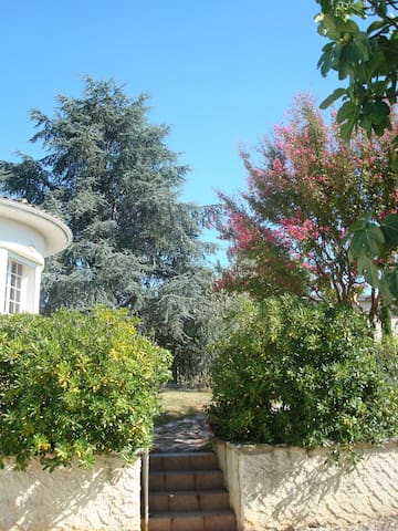 Saint Emilion (Montagne) - Montagne - Talo