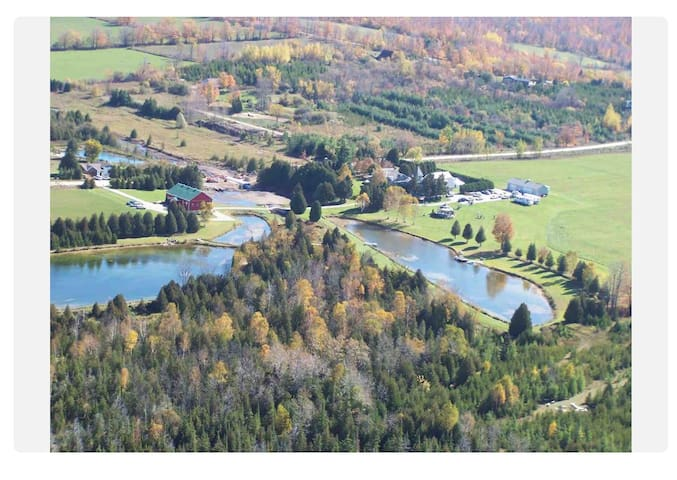 Stunning Silver Springs Retreat - 2hrs from T.O.