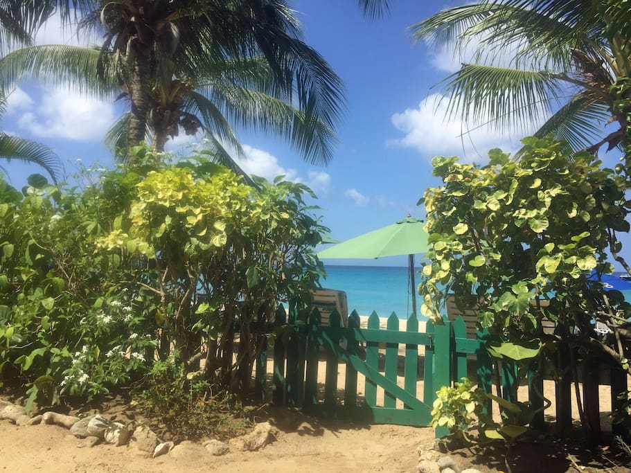 Located right on Paynes Bay Beach
