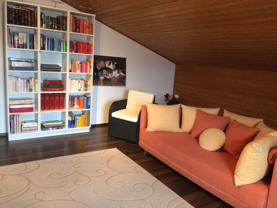 Wohnzimmer mit Schlafchoch