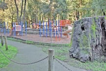 Tennis courts, a playground and more await your stay at this Redwood's getaway!