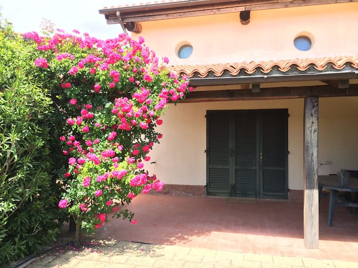 1) Stunning countryside house 2km from the seaside