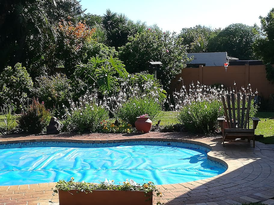 Pool (cover now necessary with Cape Town water restrictions)