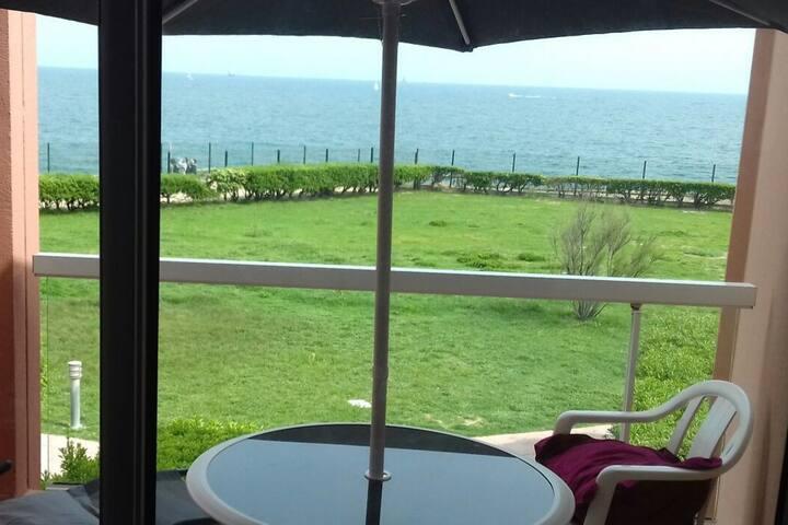 Studio front de mer accès direct plage, piscine...