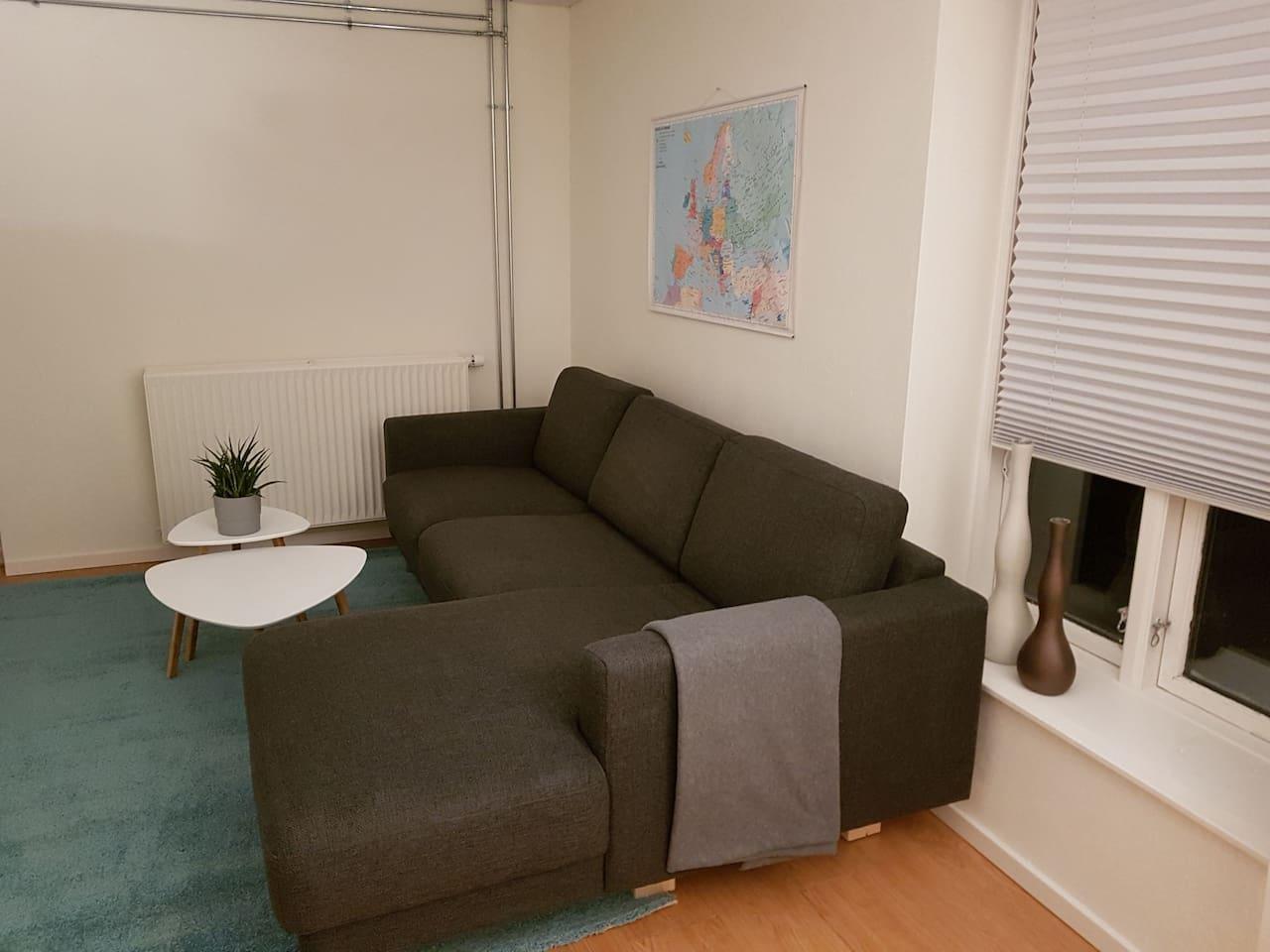 Sofa  Køkken Spiseplads i samme rum