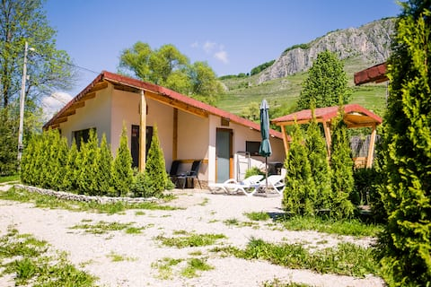 Transylvania Studio 1 Valisoara