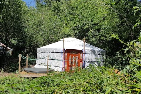 Romantic Forest Yurt with Private Jacuzzi & Pool