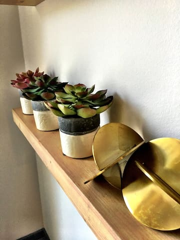 Modern aesthetics adorning the common area, floating shelves lined with succulents