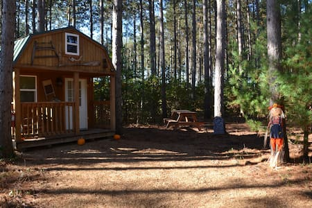 Tiny House/Cabin Close to the Dells on 10ac