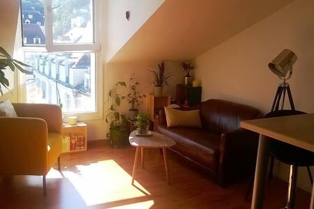 Appartement 2 chambres a lagny (proche disney) - Lagny-sur-Marne