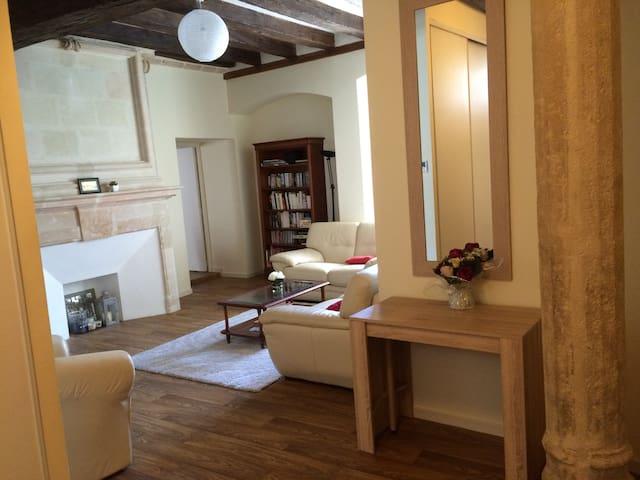 City center, 100m², 4 rooms, 7 pers - Saumur - Pis