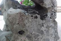 Stone from the island Brač