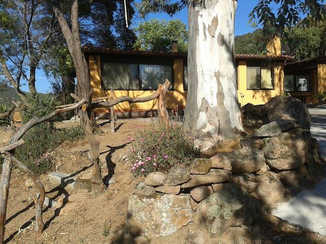Oasi tra mare e montagne - Sinnai - House