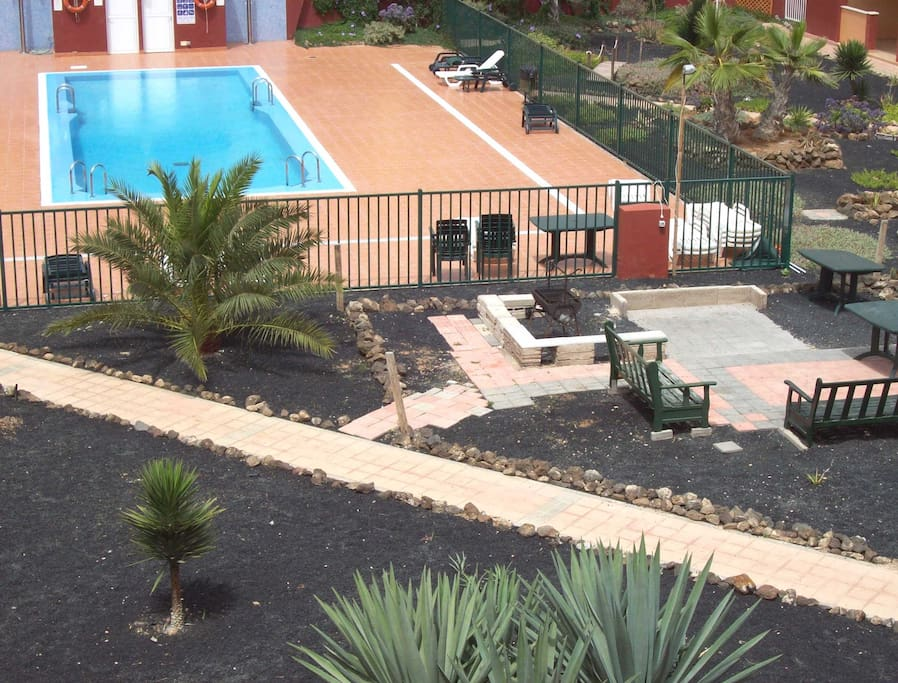 CANARY GARDEN AND MEDIUM SIZE POOL