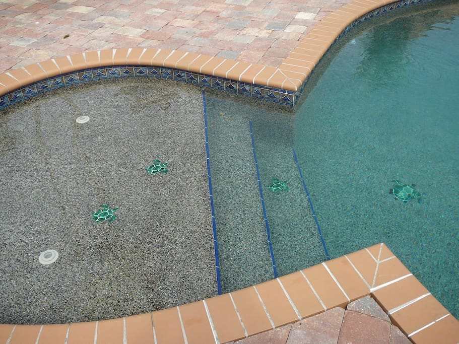 Tanning Pool with Swimming Turtles