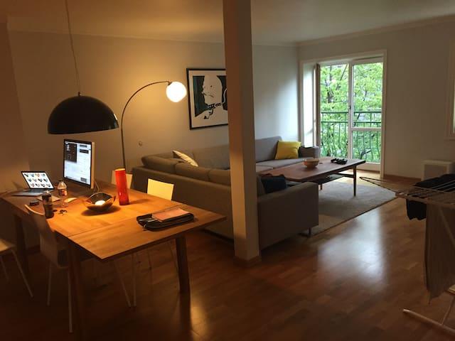 Big apartment - Drammen