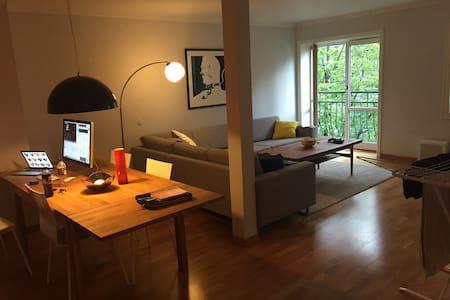 Big apartment - Drammen - Apartament