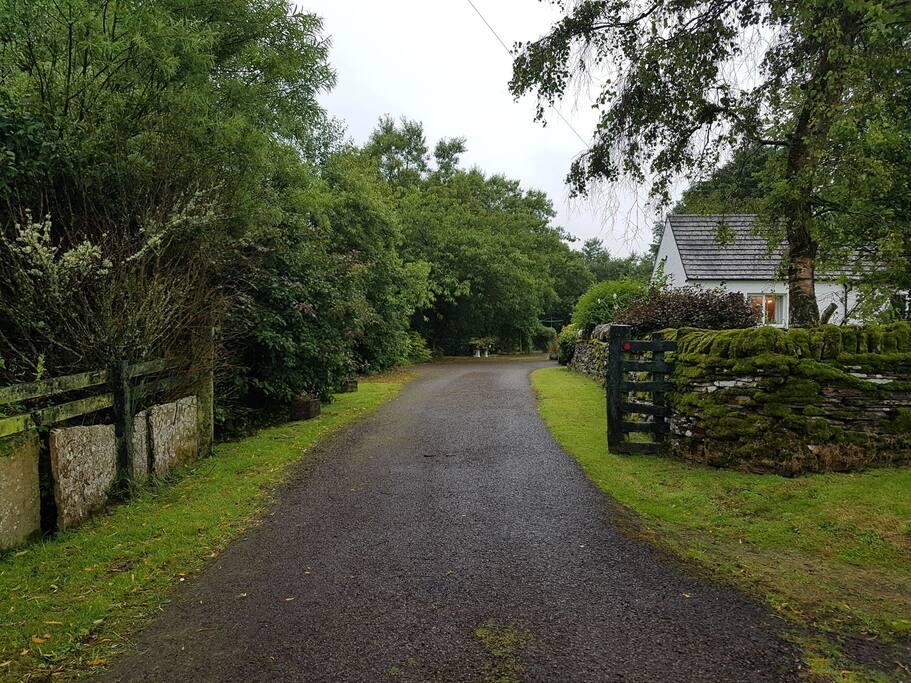 Driveway to Farm