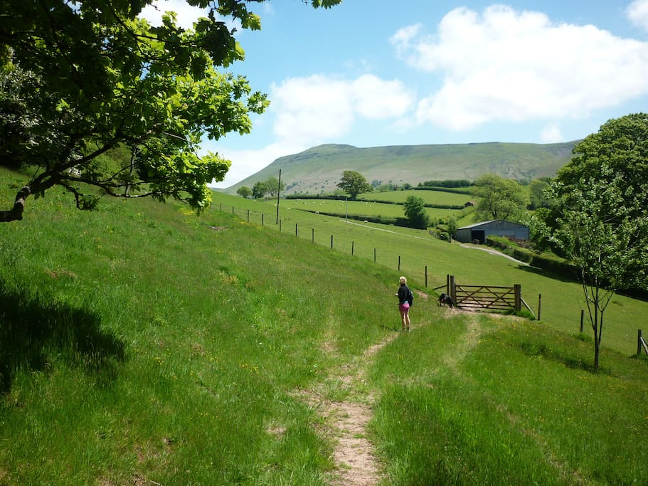 Located in the foothills of the Black Mountains, with direct easy access from our property.