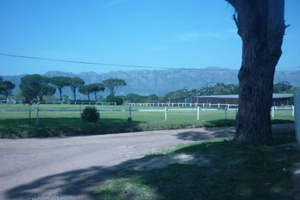 Rural Setting very close to town..horse farm & vineyards.