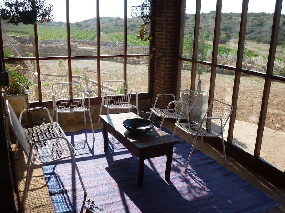 Terrasse ombragée qui offre un magnifique point de vue sur les vignes et le Canigou (montagne sacrée des Catalans)