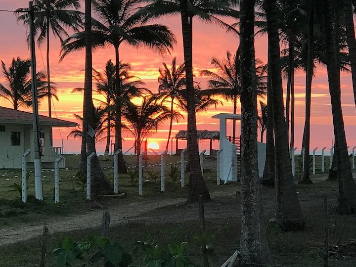 PALMERAL DE COJIMIES-UN SUEÑO HECHO REALIDAD