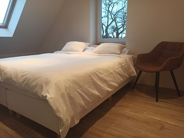 Private room near city center of Antwerp