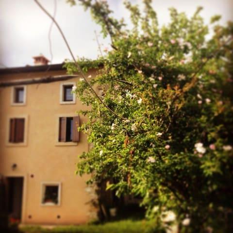 Ca' del Gelso. Valpolicella Verona - Negrar Verona - Casa