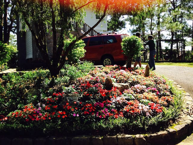 Baguio house for rent