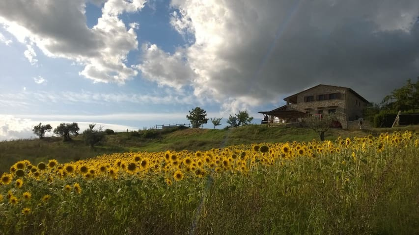 Umbrian Lodge with stunning view! - Lugnano In Teverina - Apartemen