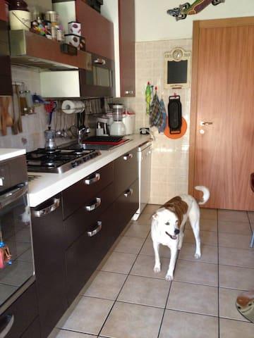 Cucina con havana