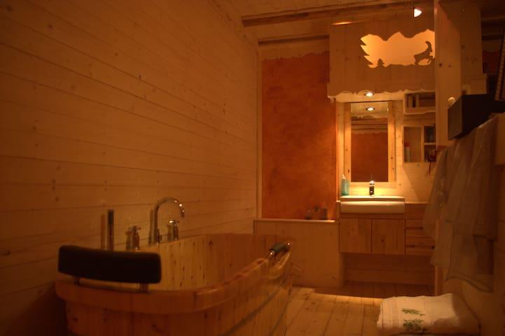 Gite de Charme - Doussard - Apartment