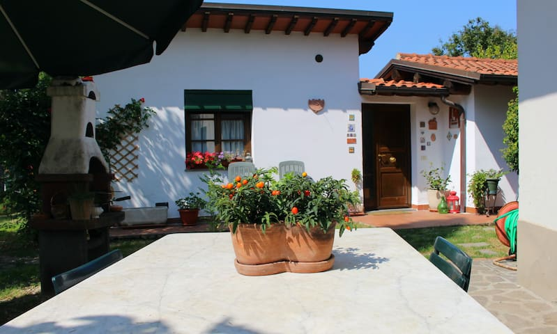 Nice country house - Empoli - Casa