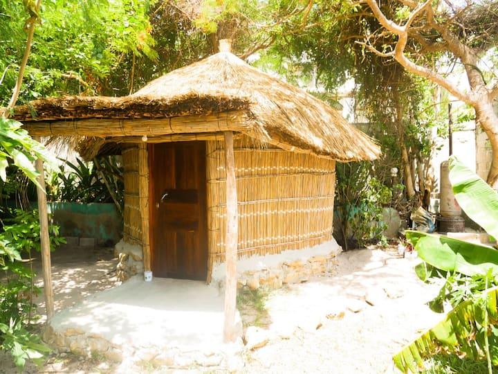 Bush beach hut 4