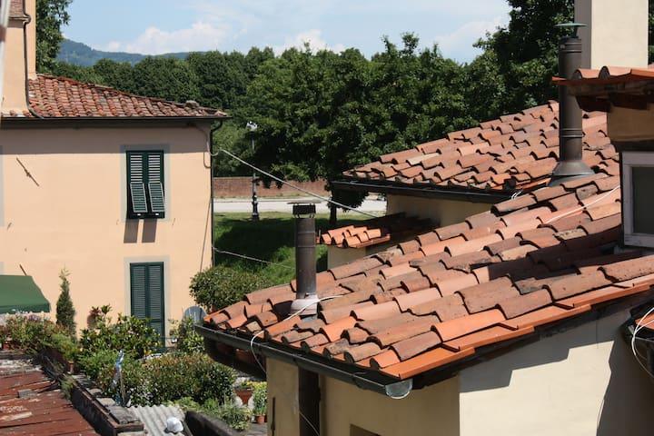 Lucca, dentro le mura - Lucca - Appartement