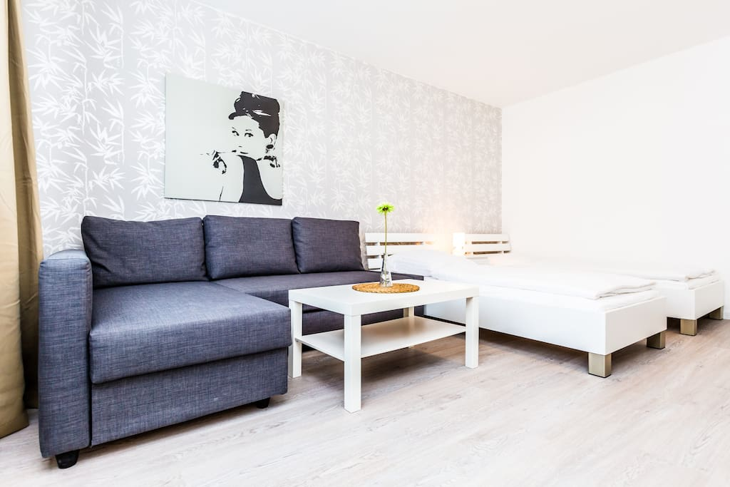 Wohnschlafzimmer/ Livingroom with two single beds