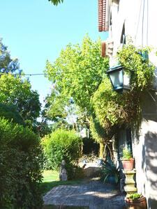 Casa de Tondela - Tondela