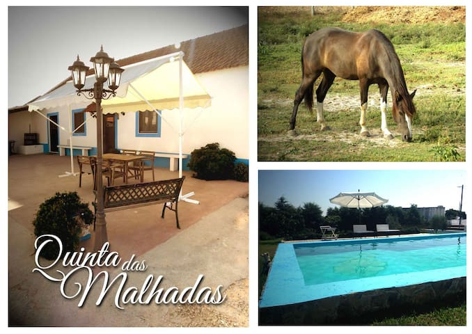 FarmHouse w/pool-20m Lisbon or Golf - Montijo - Hus
