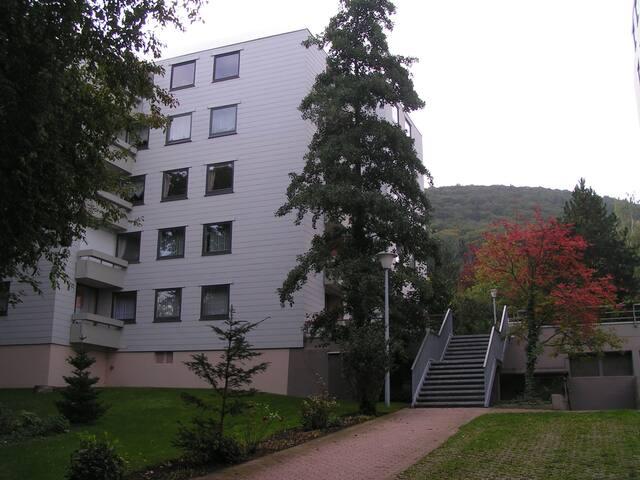 2-Zi.-Wohnung mit Weitblick * * * - Bad Harzburg - Lakás