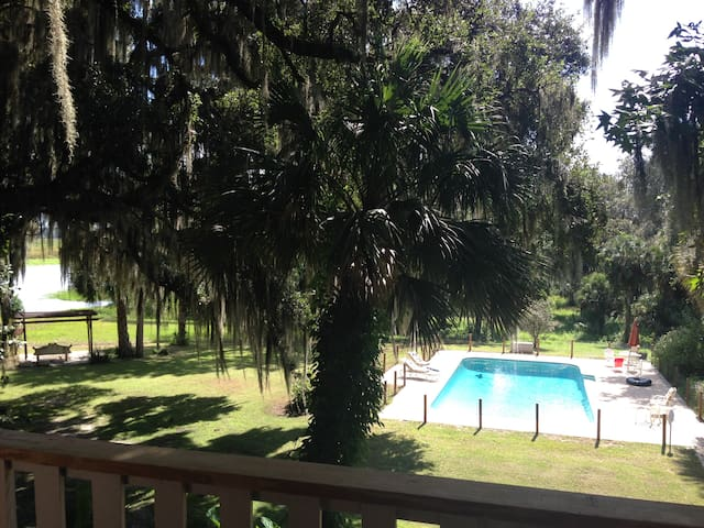 Gorgeous Private Country Estate on 15 acres. - Micanopy - House