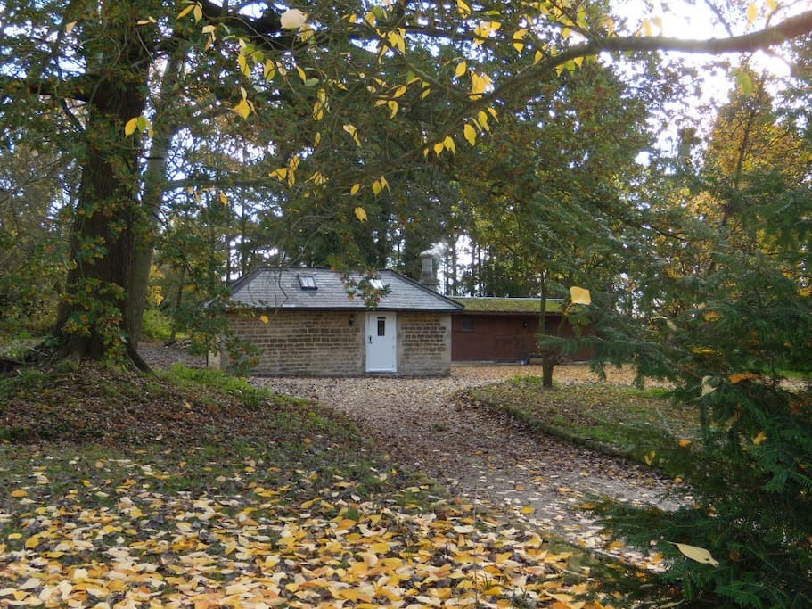 Cottage and leaf fall