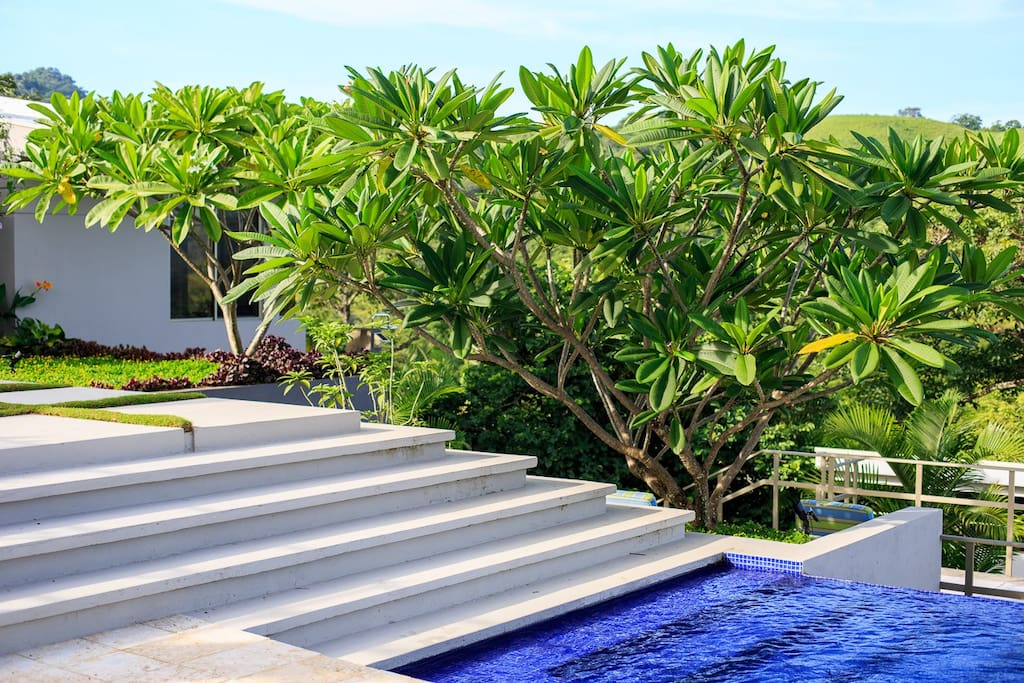 Steps will guide you into our pool.