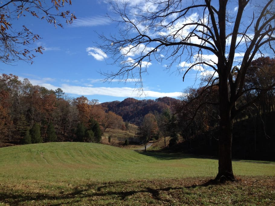 View from the guest house in fall