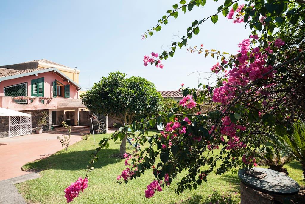 facciata e giardino