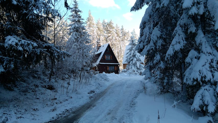Chalet Orava - Sounds of forest and stream.